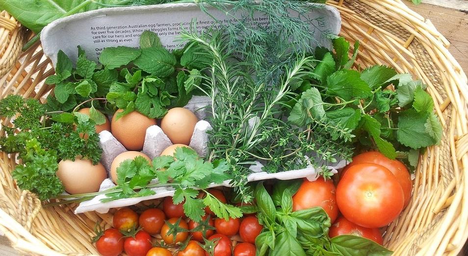 Годовая динамика цен на еду продолжает стремительно расти