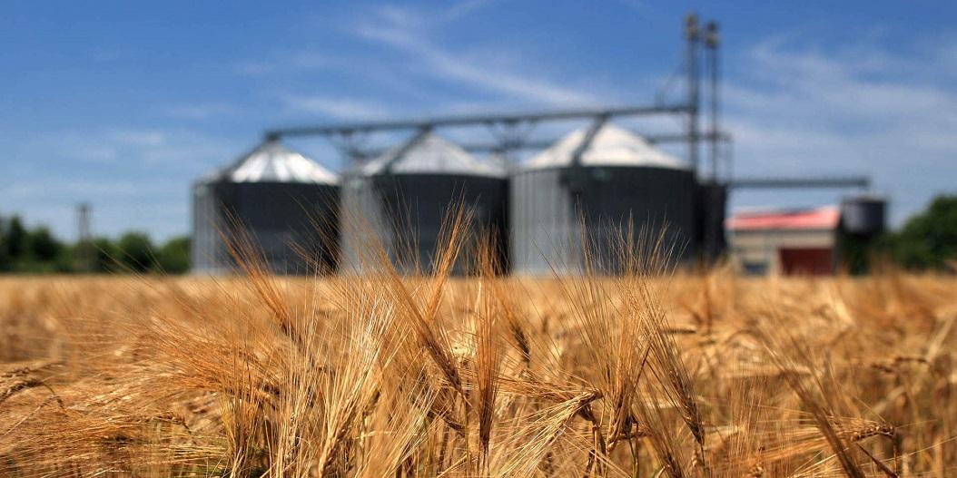 Электронные зерновые расписки споткнулись об элеваторы