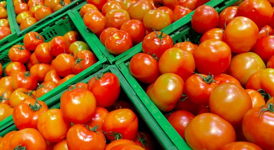 Почему россияне препятствуют ввозу казахстанских помидоров?