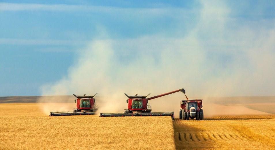 «Выживший» урожай соберёт бонус