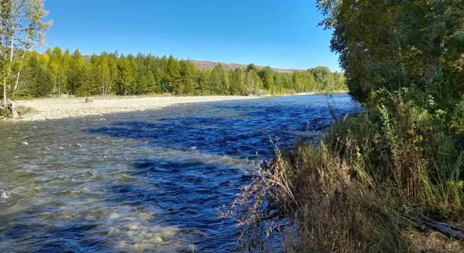 Кто загрязняет реку Курчум в Восточном Казахстане?