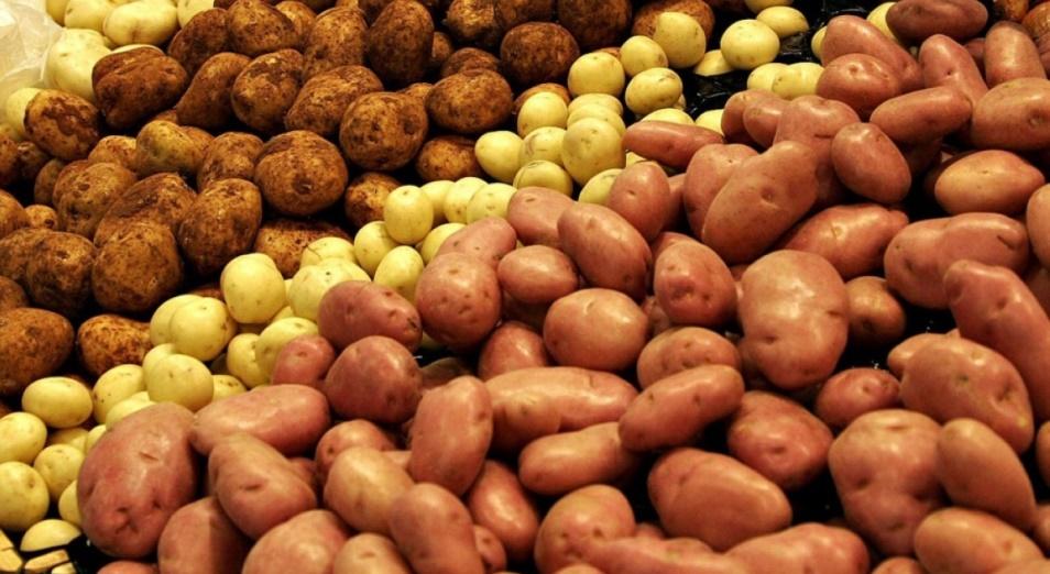 Индекс картошки – как базовый продукт стал стратегически значимым
