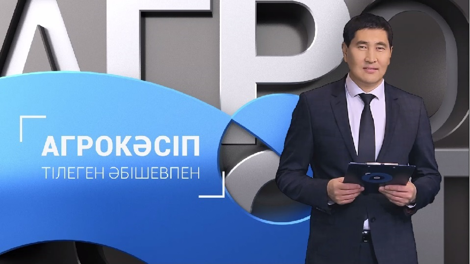 https://inbusiness.kz/ru/images/original/1/images/5D6ORCQK.jpg