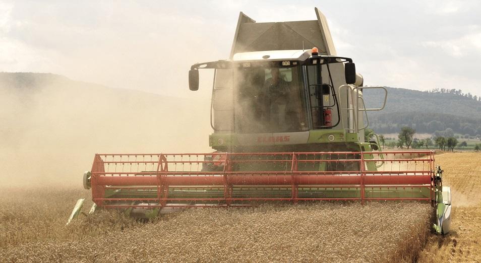 Зерно дороже денег , зерно,продкорпорация,Павлодарская область,производитель,пшеница,Клейковина,фермер,Займ,Закупочная цена,Ерлан Кабышев,ФАО