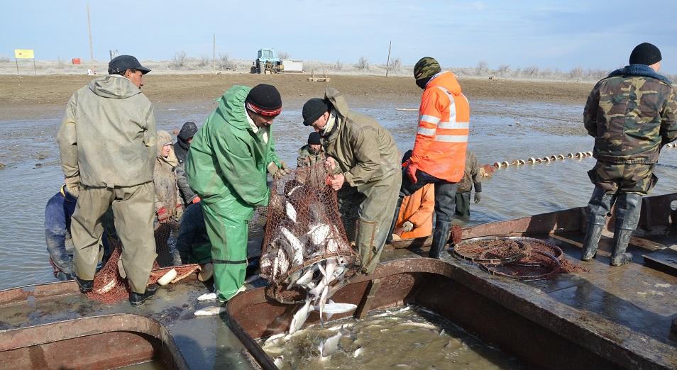 Контролировать рыболовство в режиме online предлагает прокуратура в Атырау
