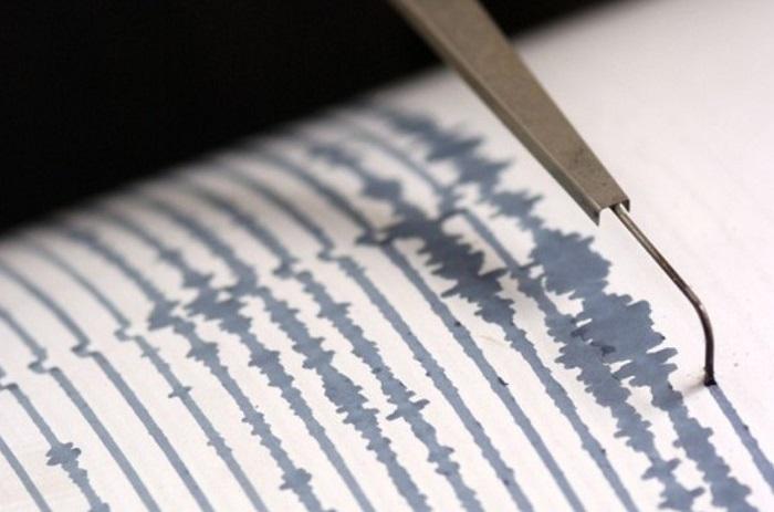 Предсказать землетрясение можно