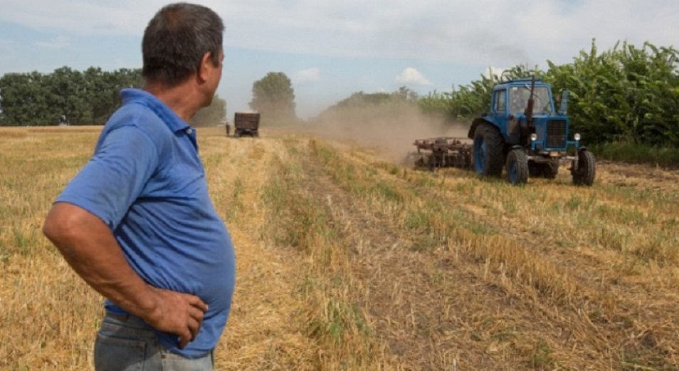 Павлодарские аграрии могут лишиться субсидий, Павлодар,АПК,животноводство,Булат Бакауов,Ораз Дюзденбаев