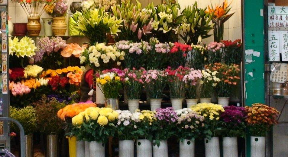 Цветочники заняли немного места под солнцем, Цветы, Алматы, акимат, МСБ
