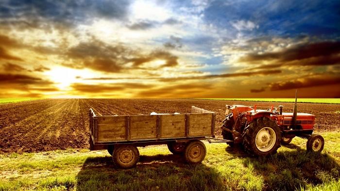 До конца 2016 года в Казахстане появится Фонд аграрных инвестиций