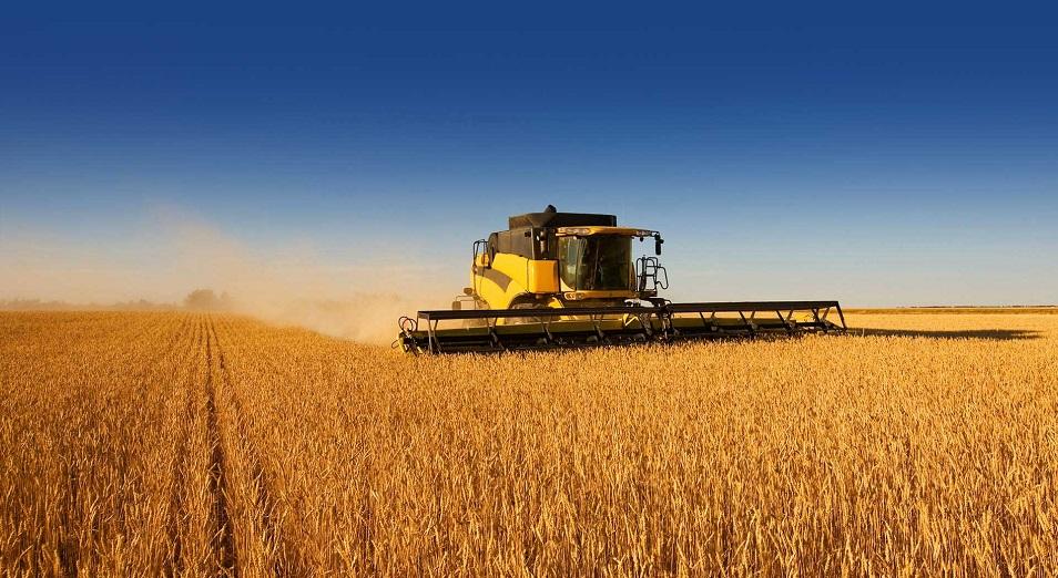 Емкость рынка для органической продукции оценивается в 95 млрд тенге
