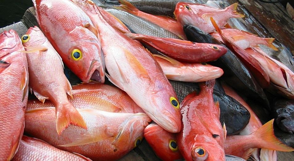 ИФК продал рыбзавод