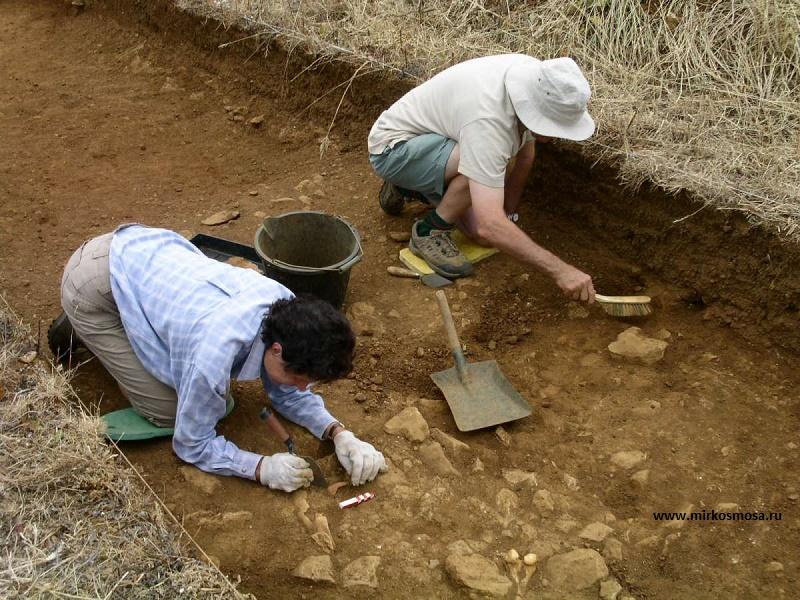 """Казахстанские археологи нашли еще одного """"золотого человека"""""""