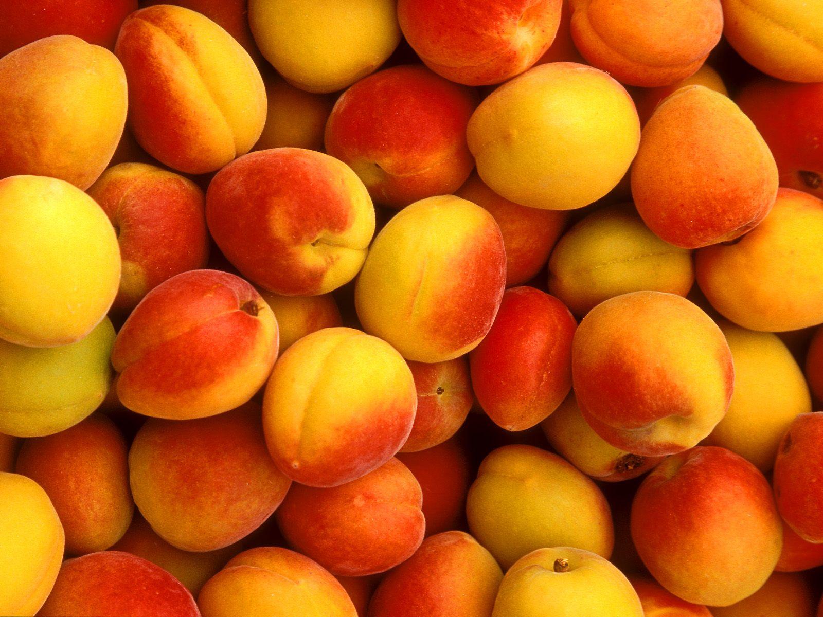 Россельхознадзор не пропустил более 20 тонн фруктов из Казахстана, Россельхознадзор, фрукты, Ввоз