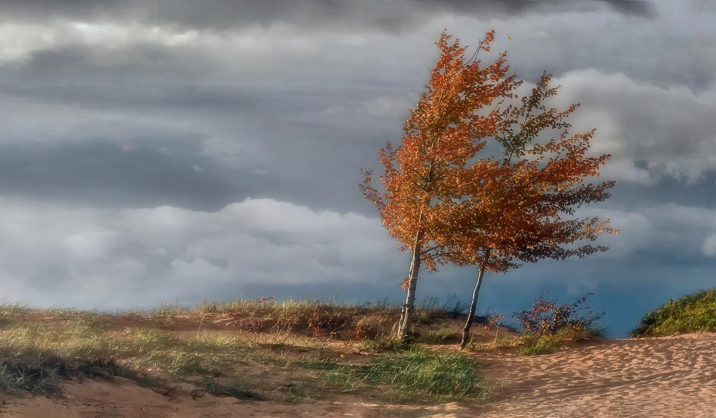 Штормовые предупреждения объявлены на среду в пяти областях Казахстана, прогноз, Погода, Казгидромет, Штормовое предупреждение