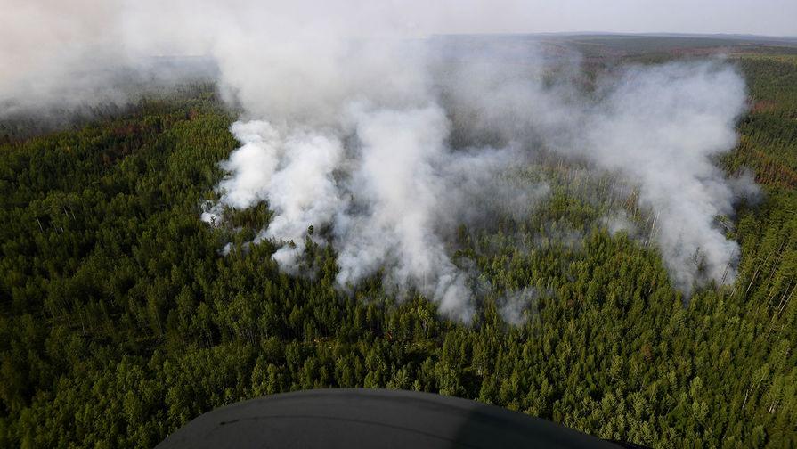 Пожар из России перекинулся на территорию Костанайской области Казахстана