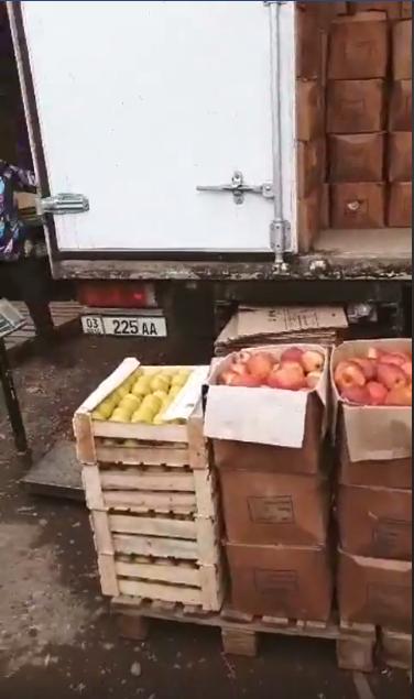 Два грузовика с яблоками из Кыргызстана выдворены за пределы РК из Шымкента
