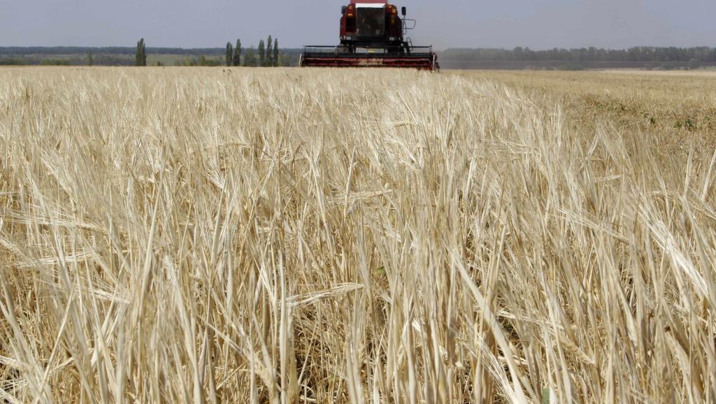 Китайский инвестор вложит 7,7 млрд тенге в строительство агрокомплекса в Восточном Казахстане