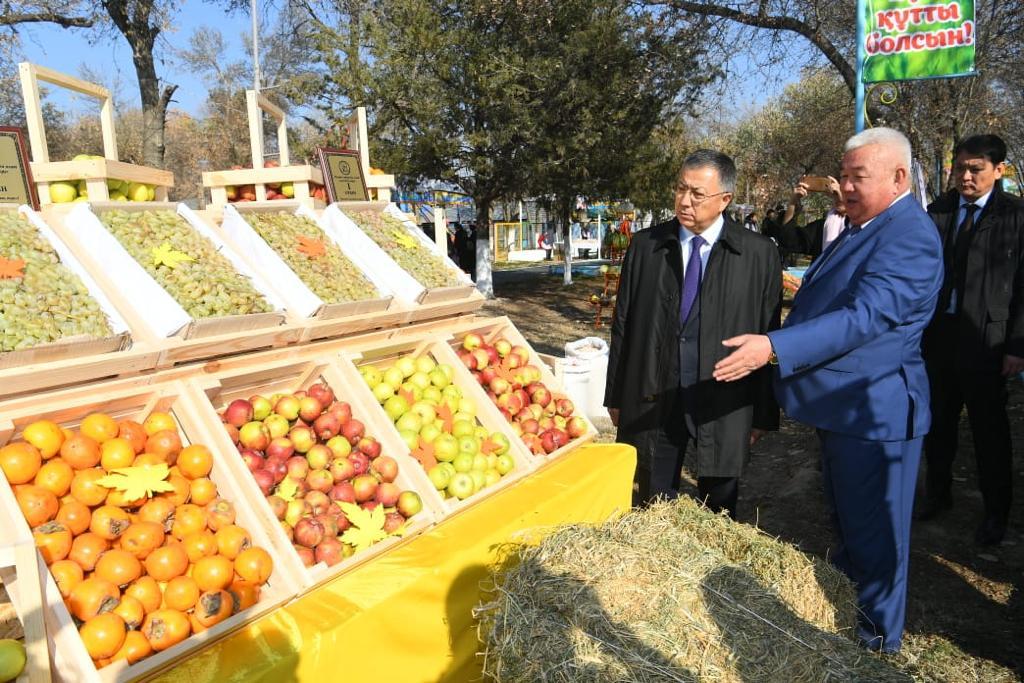 Фермеры района в Туркестанской области собрали более 400 тыс. тонн бахчевых