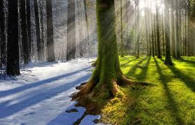 Казахстан потратил 240 миллиардов тенге на изучение изменений климата