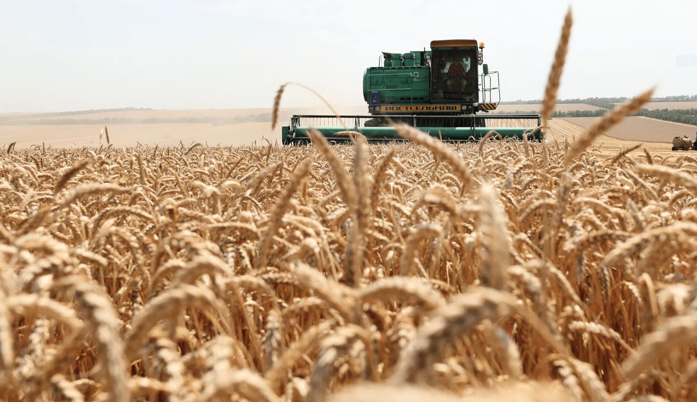 Аграрии Актюбинской области произвели продукции на 228  млрд тенге в 2018 году