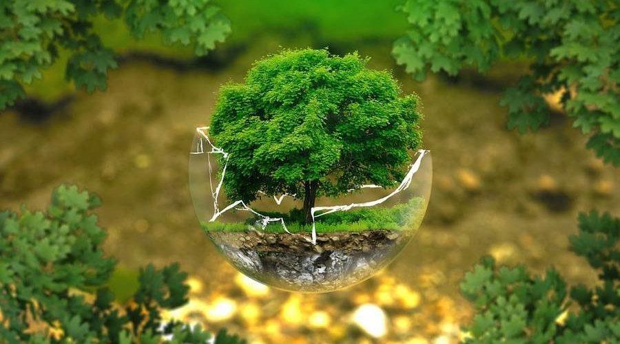 Первая международная конференция «зеленых» технологий