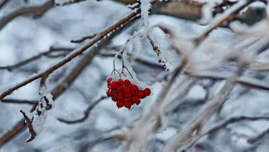 Погода в РК: мороз ожидается в большинстве регионов