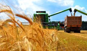 На весенние полевые и уборочные работы в 2020 году выделено 70 млрд тенге