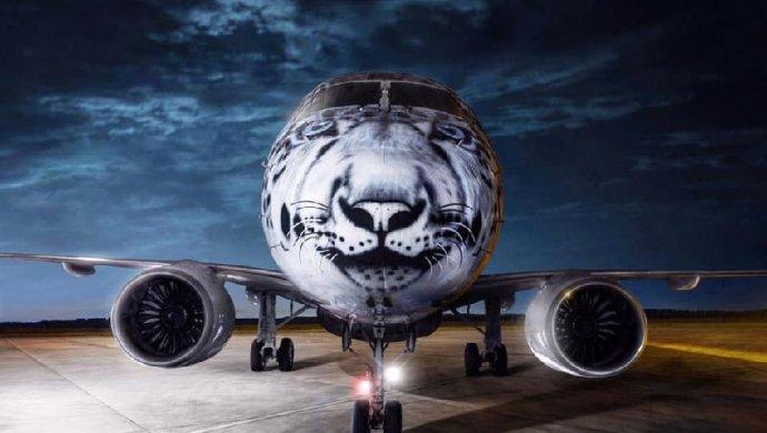 Приземлившийся в Астане авиалайнер Embraer стал началом замены авиапарка Air Astana