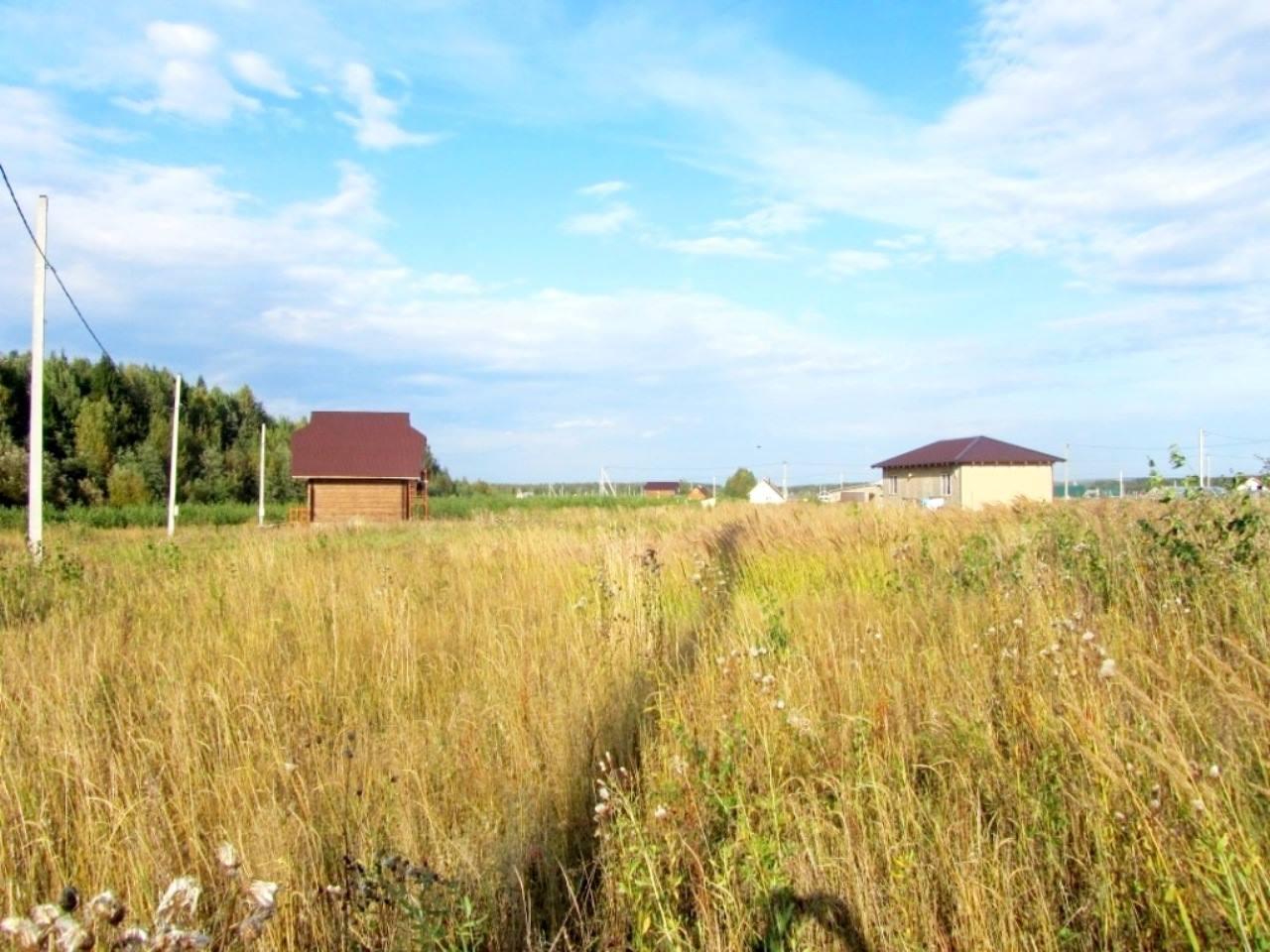 Комитет по управлению земельными ресурсами МСХ РК не знает количество неиспользуемых участков – прокуратура