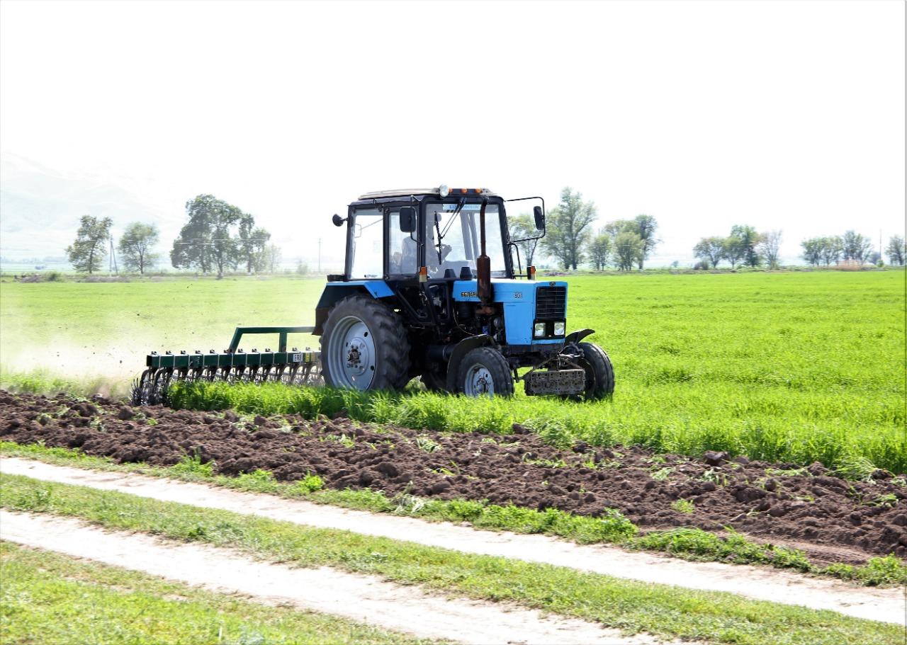Аким Жамбылской области поручил ежегодно увеличивать площадь посевных земель на 10%