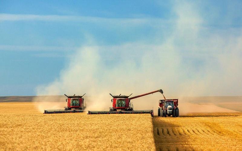 Аграрии выбирают комбайны, произведенные в Казахстане