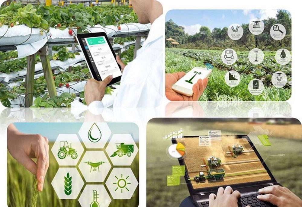 С 2021 года минсельхоз планирует ввести субсидирование затрат фермеров на внедрение научных разработок