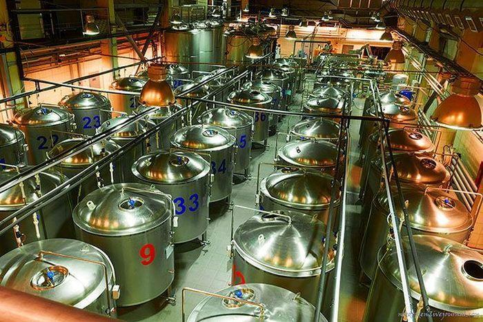 Импорт пива в РК в январе-сентябре вырос на 31,8%