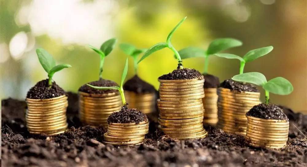 Казахстанская Kusto Group и американская BASS намерены создать СП по производству семян
