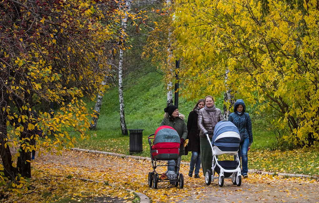 Минтруд РФ может разработать стимулы для приёма на работу женщин с детьми