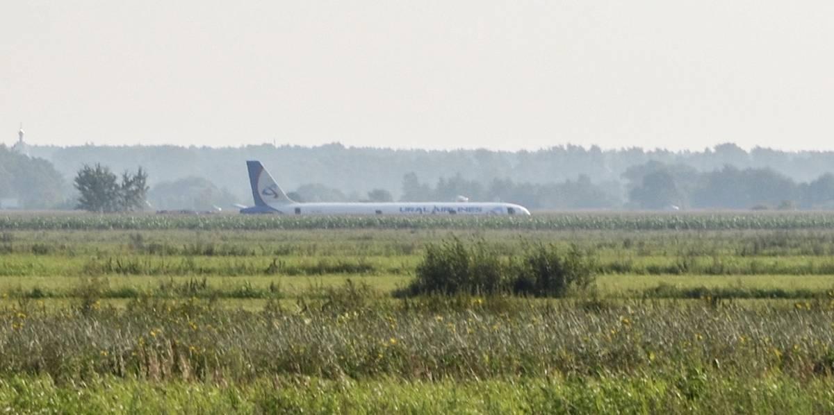 Airbus A321 аварийно сел в поле в Подмосковье