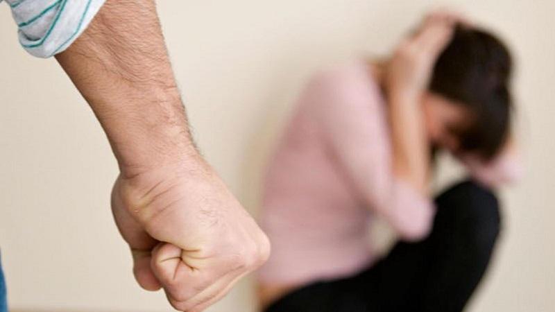Действующий закон о борьбе с бытовым насилием не эффективен – мажилисмен