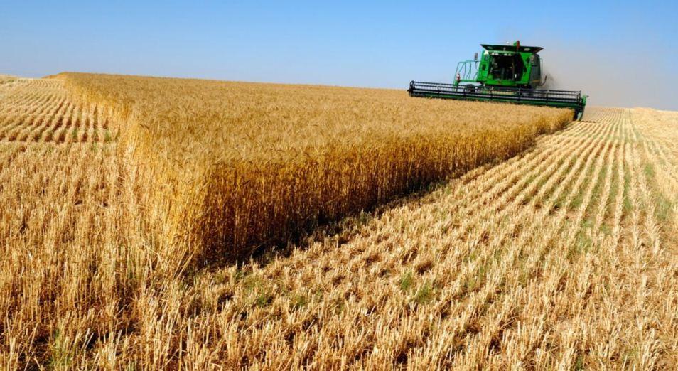 Погода снижает скорость сбора пшеницы