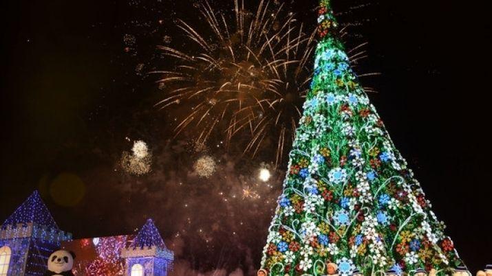 Церемония зажжения главной новогодней ёлки Астаны состоится на территории Экспо