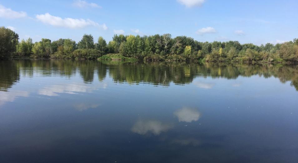 Павлодарские «зеленые» прописались в судах, ЭКОМ, вырубка деревьев, зеленые насаждения, гребной спорт, Павлодар, экология, река Усолка