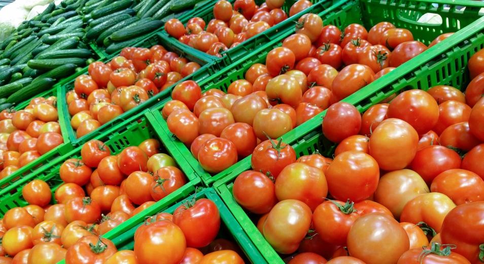 Аграриям выделят 3 млрд тенге для налаживания сбыта продукции