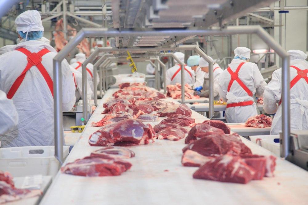 Производство мяса в Казахстане увеличилось на 7,3%, мясо, Продукты питания, Животноводство, Мясное животноводство