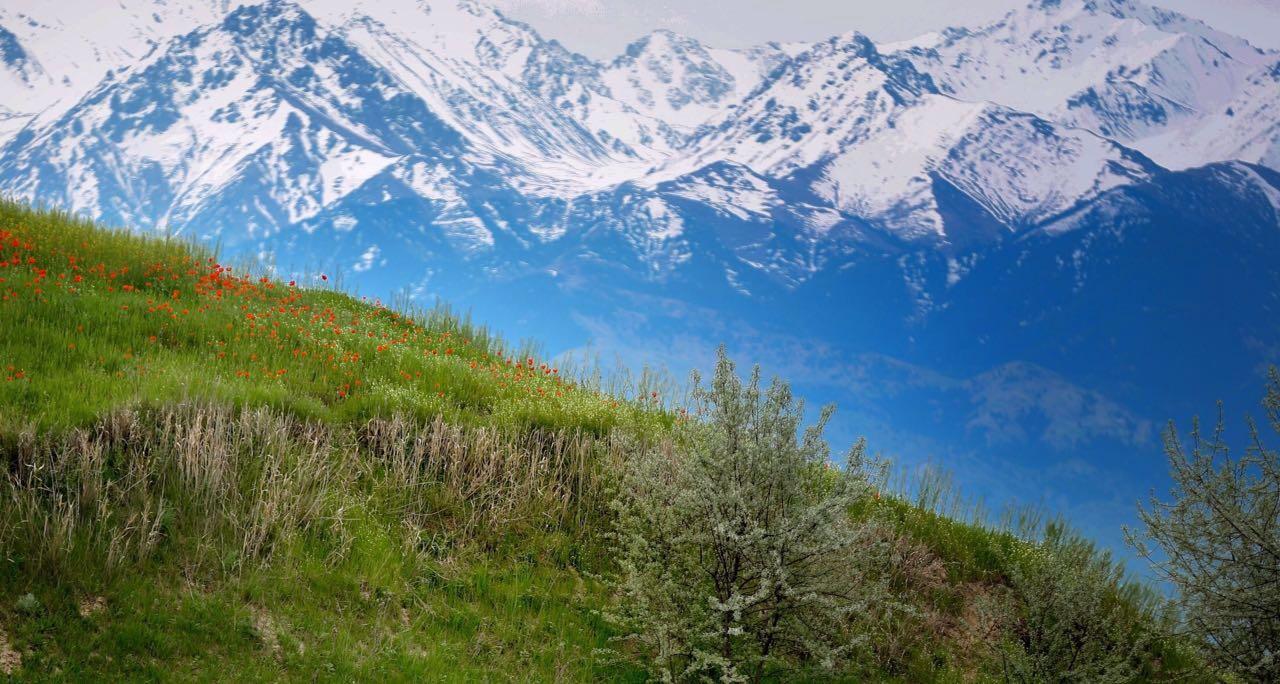 Туристок из Испании спасли в горах Алматы