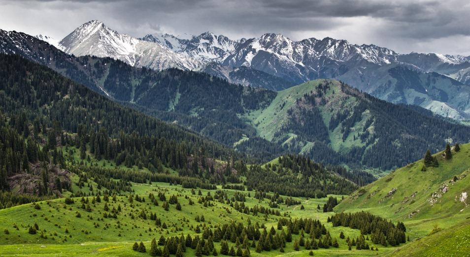 «Кок-Жайляу» станет аналогом улицы Панфилова, Кок-Жайляу, Курорт, Туризм, Внутренний туризм, улица Панфилова, Almaty Mountain Resorts, экология, Заповедник