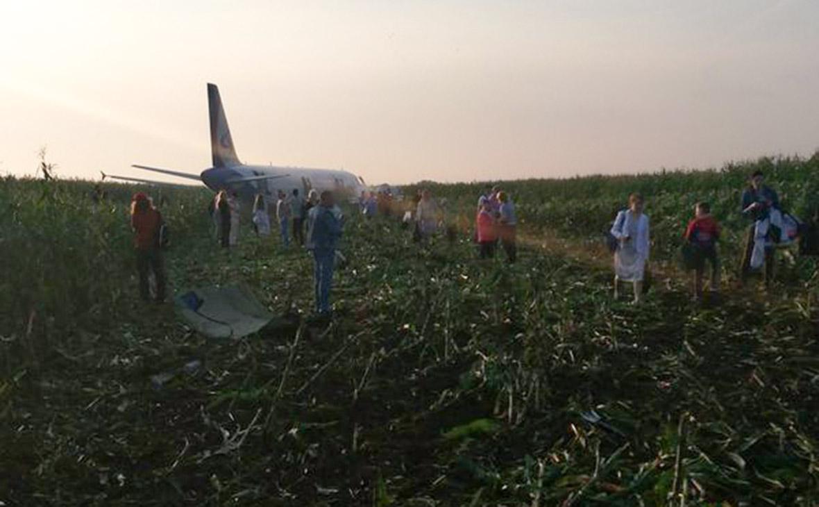 В больницы после аварии самолета под Москвой доставлены 29 человек
