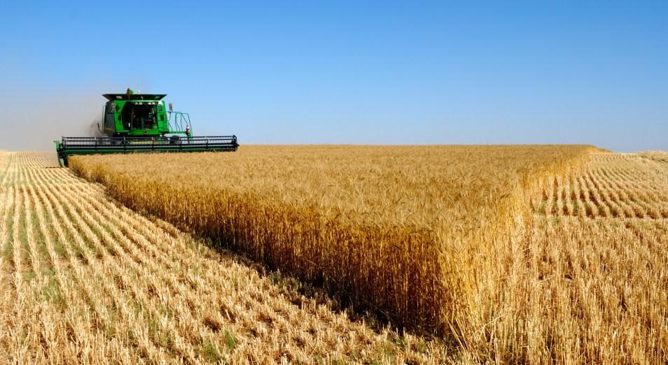 Тимур Кулибаев: «Мы должны рассматривать импортозамещение продовольствия с точки зрения экономической безопасности»