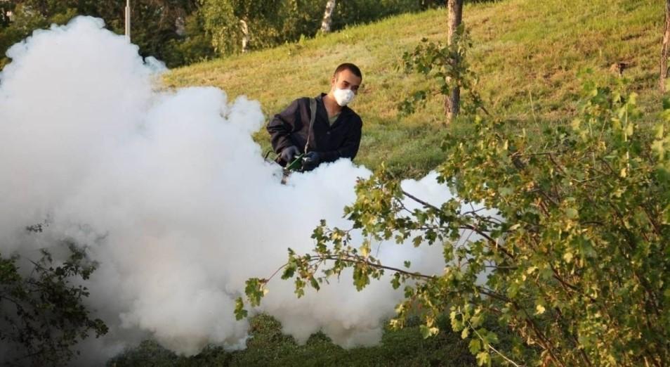 Более 600 млн тенге потратят на борьбу с гнусом в Павлодарской области