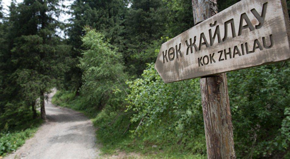 «Нулевой вариант» по Кок-Жайляу довел до суда, Кок-Жайляу, экология, Курорт, Туризм, Almaty MountainResorts, Зеленое спасение, строительство, Суд