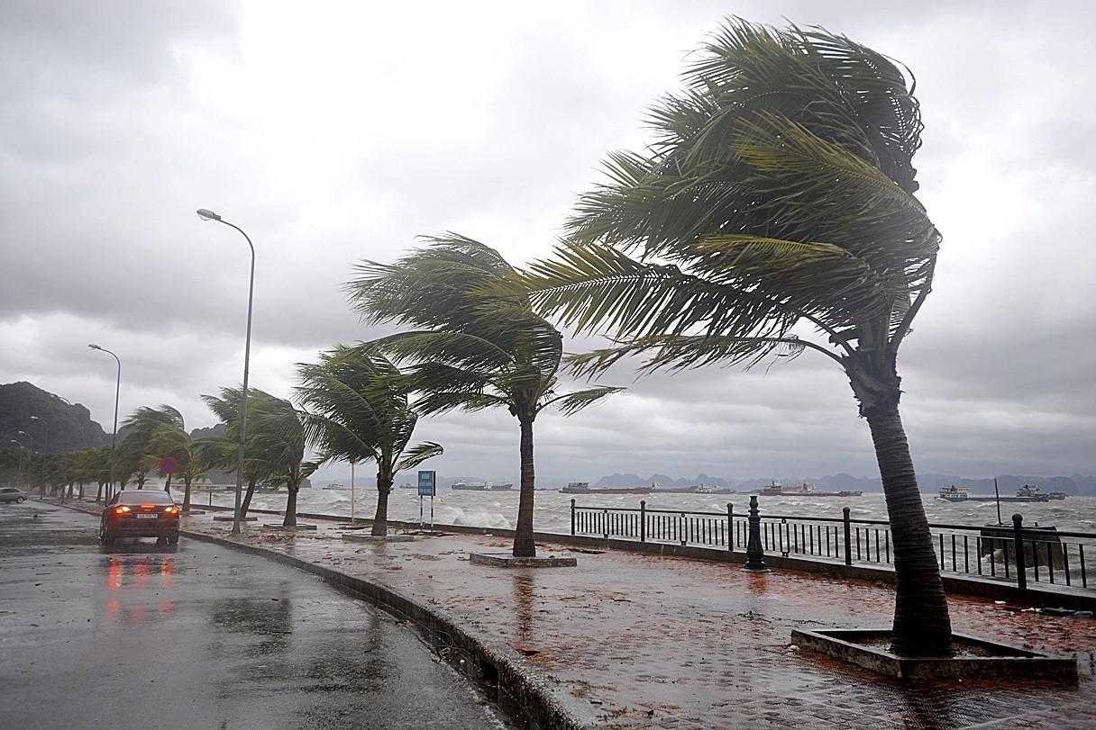 """На Тайване из-за тайфуна """"Байлу"""" отменены более 350 авиарейсов"""