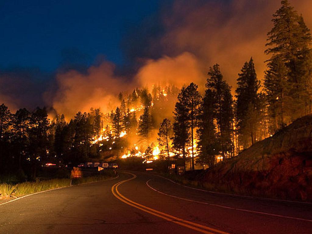 Около 8000 человек эвакуируют в американском штате Калифорния из-за лесного пожара